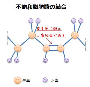 不飽和脂肪酸の結合