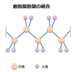 飽和脂肪酸の結合